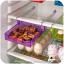 [Pre-order]Storage Refrigerator Rack Type 1 ลิ้นชักจัดระเบียบในตู้เย็น thumbnail 6