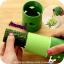 Veggie Twister อุปกรณ์สไลด์ผัด แบบเกลียวหมุน 2 สไตล์ thumbnail 5