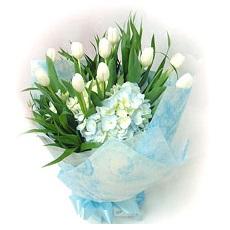 ช่อวาเลนไทน์ทิวลิปขาวแสนคลาสสิค 10 ดอก