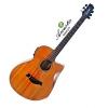 Acoustic S536EQN