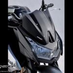 ชิวหน้า Ermax for Z1000