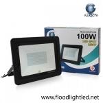 สปอร์ตไลท์ LED 100w รุ่นบาง ยี่ห้อ Iwachi (แสงขาว)
