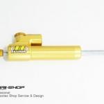Hyperpro RSC สีทอง