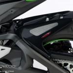 บังโคนหลังเพรียวเคฟล่า POWER BRONZE FOR KAWASAKI ZX10R