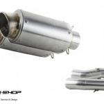 PR2 AK MONSTER795 SLIPON STAINLESS