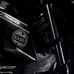 การ์ดหม้อน้ำLeon for Honda CBR300R CB300F รุ่น Originale