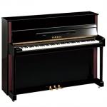 เปียโน JX113T PE