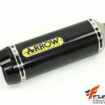 ท่อ Arrow Slip Carbon for Ducati Monster 821