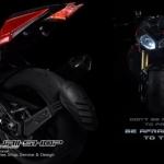 กันดีด LEON FOR BMW S1000R/S1000RR