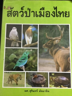 สัตว์ป่าเมืองไทย. ผู้เขียน ผศ.สุรินทร์ มัจฉาชีพ