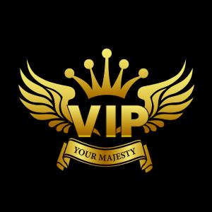 ไฟส่องประตู Welcome Light - VIP