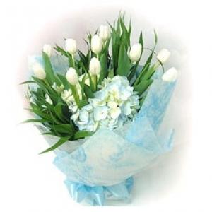 ช่อแสนคลาสิคของทิวลิปสีขาว 10 ดอก แต่งด้วยไฮเดรนเยียขาวอมฟ้า