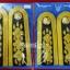 อินธนูข้าราชการพลเรือนชุดขาว ระดับ 5-6(ชำนาญงาน,ปฎิบัติการ) thumbnail 1