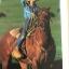 Colorado Cowboys. ผู้เขียน Christopher Marona thumbnail 17
