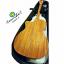 กีตาร์ โปร่ง ไฟฟ้า ยี่ห้อ Acoustics รุ่น AS200-C Top Solid Sitka Select Spruce ไม้หน้าแท้ทั้งแผ่น สำเนา thumbnail 2