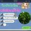 วิตามินหน้าเรียว ยกกระชับ ปรับรูปหน้า สูตร Botox (30 เม็ด) thumbnail 5