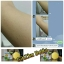 สบู่ จินซู เมือกหอยทากฟองยืด GinZhu Body Whitening mask soap พอกผิวขาว เพิ่มความขาว 10 ระดับ กล่องสีเหลือง ก้อนเหลือง thumbnail 5