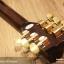 กีตาร์ โปร่ง ไฟฟ้า ยี่ห้อ Acoustics รุ่น AS255-CS Top Solid Sitka Select Spruce ไม้หน้าแท้ทั้งแผ่น thumbnail 7