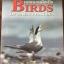 นกแหลมผักเบี้ย. Birds of LAEM PHAK BIA. ผู้เขียน Philip D.Round และ วิเชียร คงทอง thumbnail 1