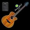 กีตาร์โปร่ง Acoustic ไฟฟ้า รุ่น S5EQN ไม้หน้าแท้ Top Solid Mahogany